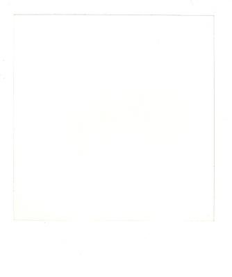 blank polaroid png - 564×682
