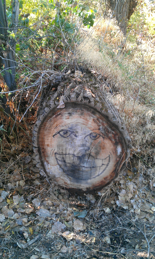 stump face sacramento
